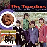 Here Come the Tremeloes