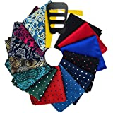 ekSel Pocket Squares Sets and Pocket Square Holders Organizers for Men Assorted Colors Polka Dots Paisley Plain