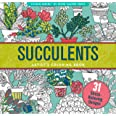 Succulents Adult Coloring Book (31 stress-relieving designs)