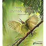 A Visual Celebration of Borneo's Wildlife: [All Royalties Donated to Fauna & Flora International]