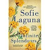 Infinite Splendours
