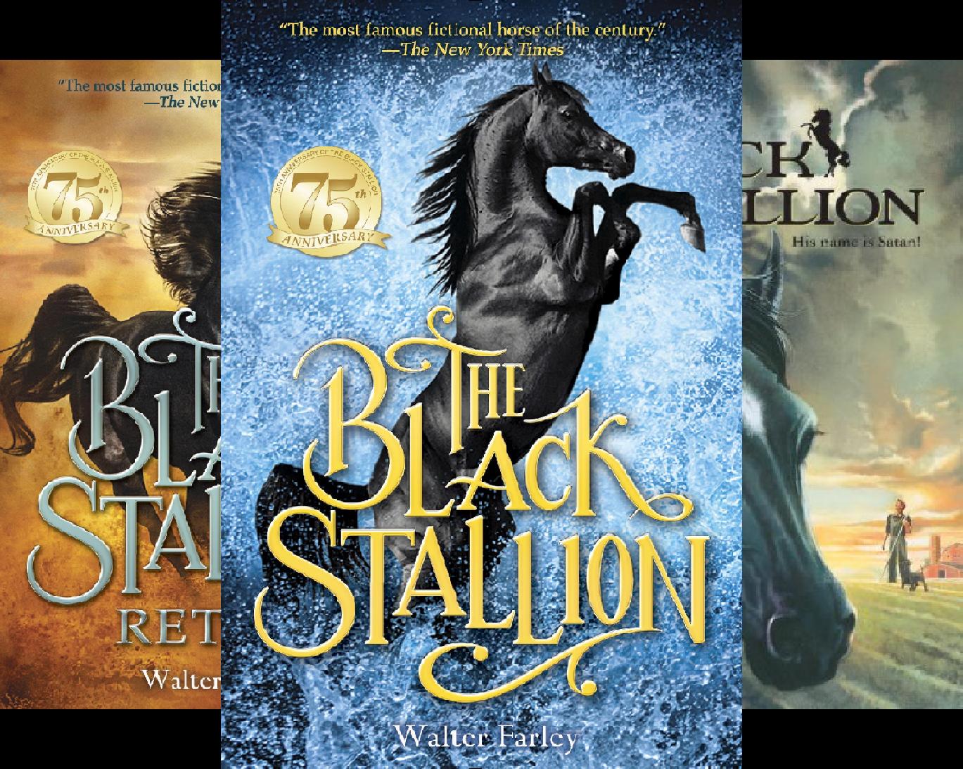 Black Stallion (20 Book Series)