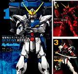 機動戦士ガンダムSEED DESTINY ASTRAY Re: Master Edition