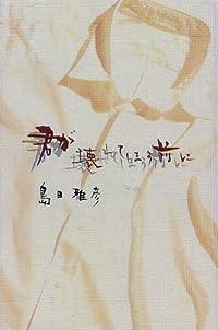 島田雅彦『君が壊れてしまう前に』の表紙画像
