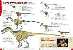 恐竜の違いがよくわかる標本ページ