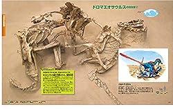 ベロキラプトルvs.プロトケラトプスの闘争化石