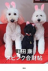 町田康『スピンク合財帖』の表紙画像