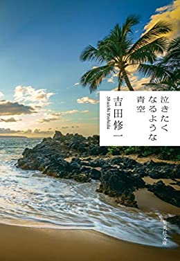 泣きたくなるような青空(集英社文庫)