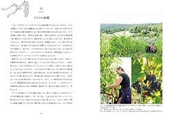 トスカーナでブドウ畑の収穫