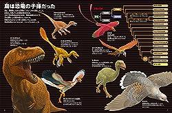 鳥は恐竜の子孫だった!
