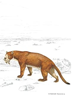 ティラコスミルス(頭胴長約1m)