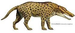 アンドリュウサルクス(頭胴長約 3〜3.5 m)