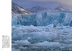 海氷のハンター