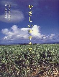 垂見健吾/池澤夏樹『やさしいオキナワ』の表紙画像