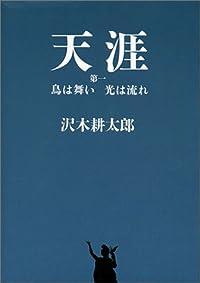 沢木耕太郎『天涯 第1 鳥は舞い光は流れ』の表紙画像
