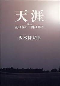 沢木耕太郎『天涯 第2 花は揺れ闇は輝き』の表紙画像