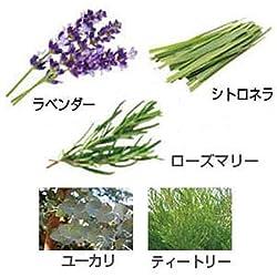 使用されている主な植物