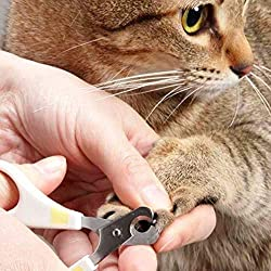 刃先部分を持ち上げたようにカーブさせた爪切りです
