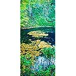 世界遺産 iPhone X 壁紙(1125x2436) 秋の白神山地 青池