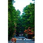 世界遺産 iPhone4s 壁紙 視差効果  秋の日光