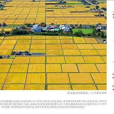 北海道 iPad壁紙 or ランドスケープ用スマホ壁紙(1:1)-1 - 黄金色の田園風景