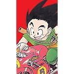 ドラゴンボール iPhone SE/8/7/6s(750×1334)壁紙 孫悟空
