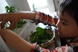 食育・緑育のきっかけに