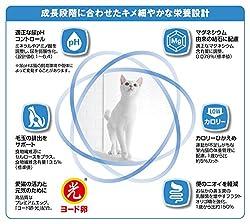 猫の臨床栄養学から生まれたプレミアム・フード