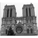 世界遺産 QHD(1080×960) ノートルダム大聖堂 クリスマスツリー