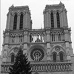 世界遺産 iPad壁紙 ノートルダム大聖堂 クリスマスツリー