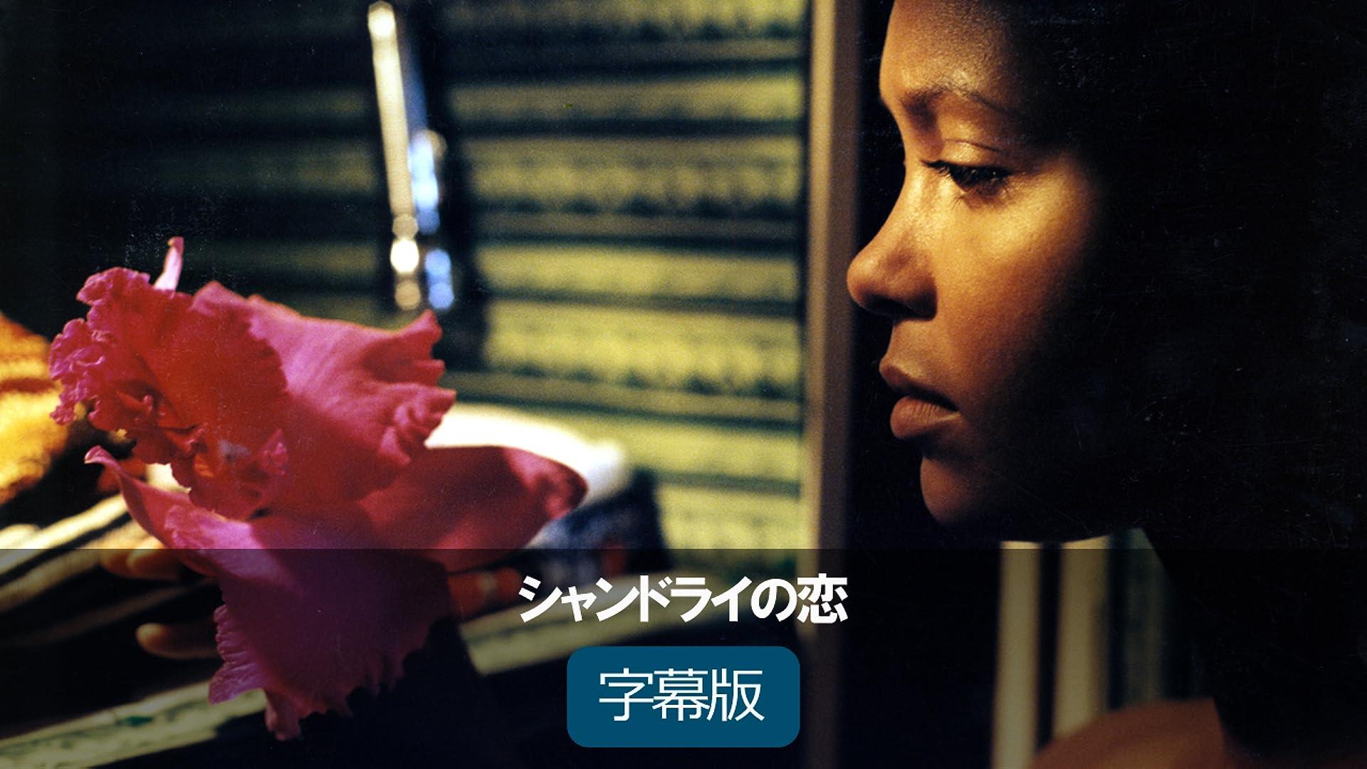 シャンドライの恋(字幕版)