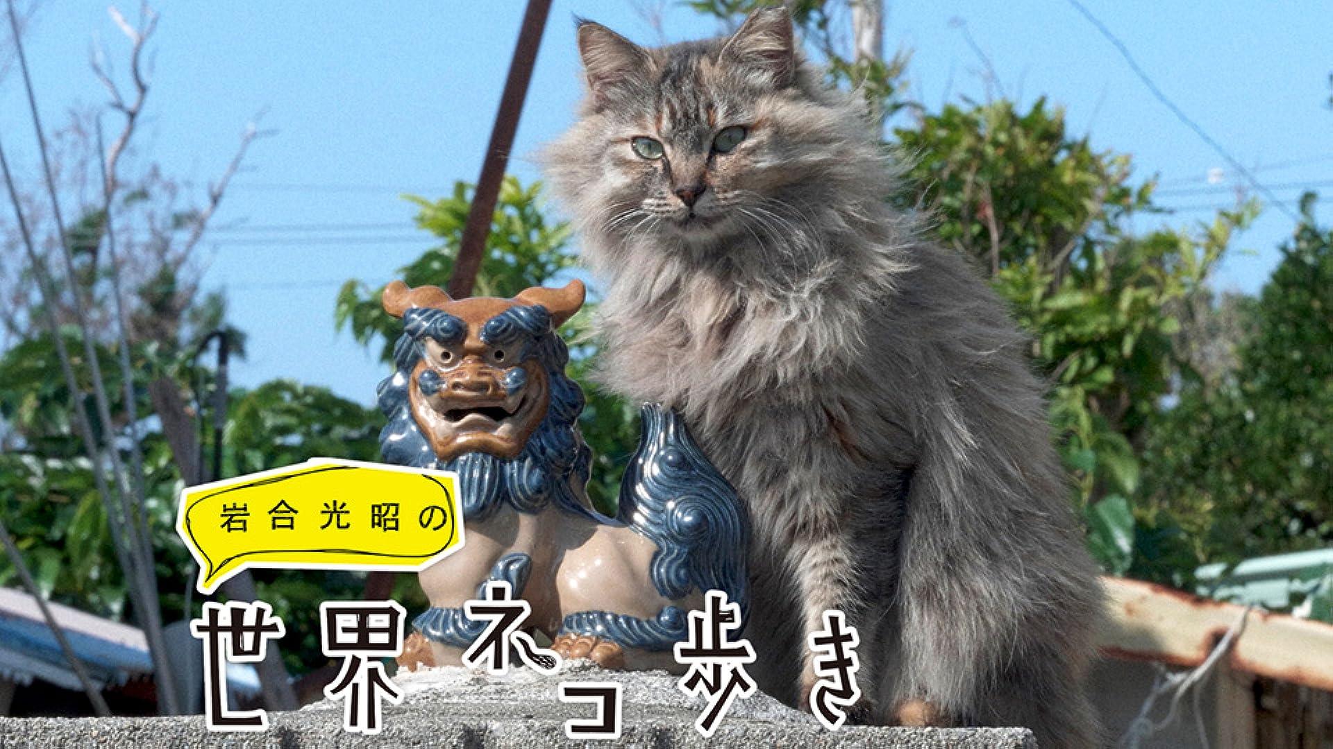 岩合光昭の世界ネコ歩き(NHKオンデマンド)