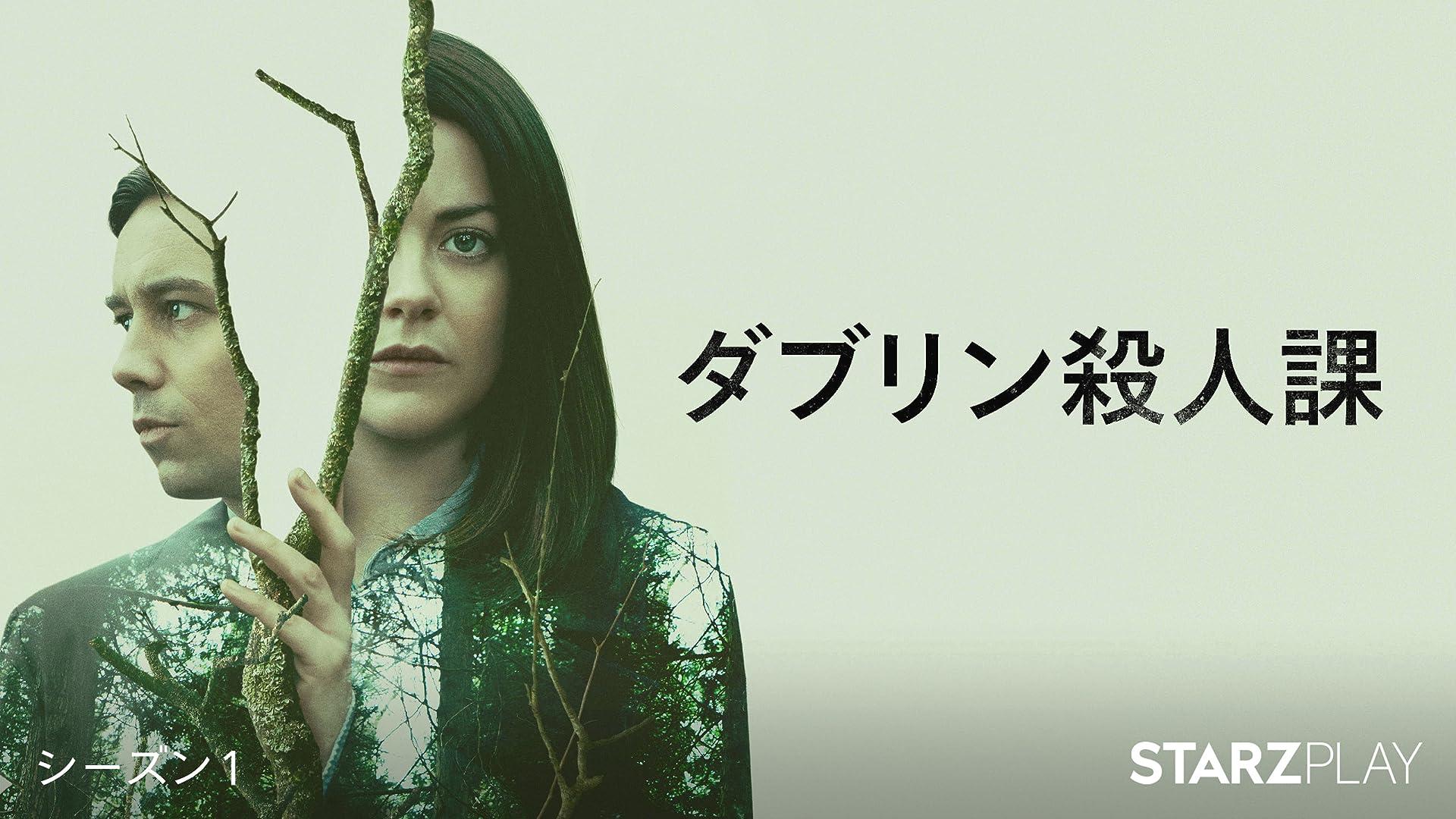 ダブリン殺人課シーズン 1 (字幕版)