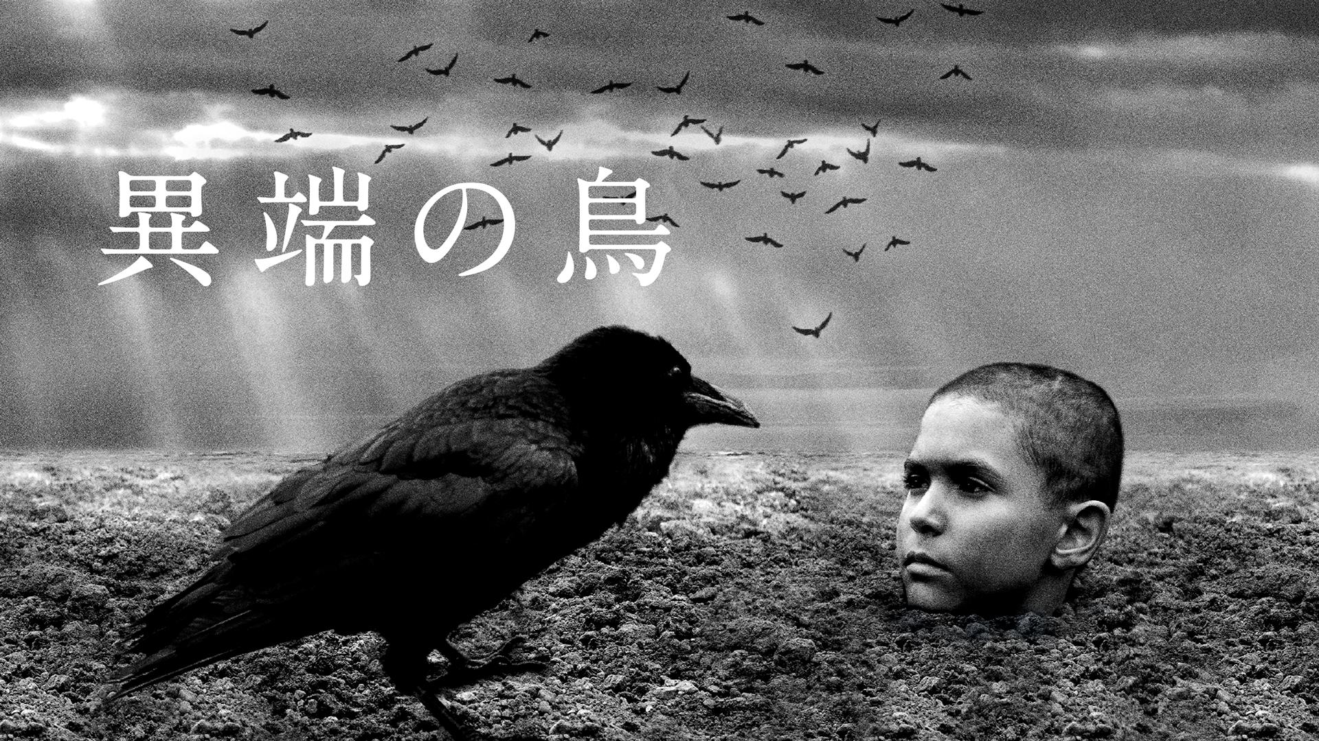 異端の鳥(字幕版)