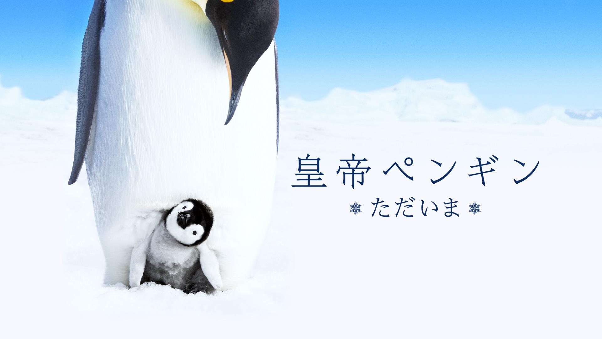 皇帝ペンギン ただいま(吹替版)