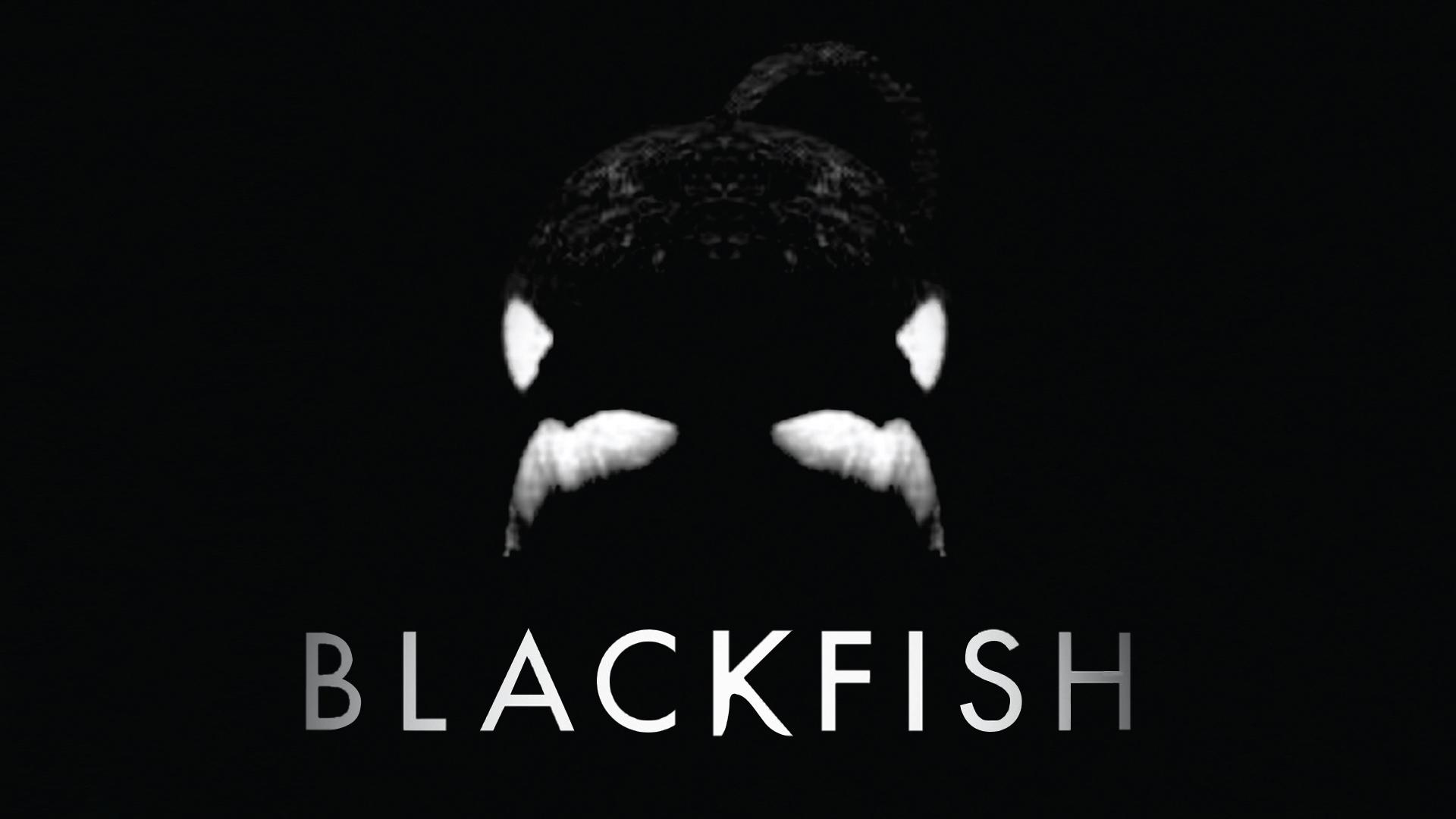 ブラックフィッシユ:「殺人シャチ」と呼ばれた黒き悲しき生物(字幕版)