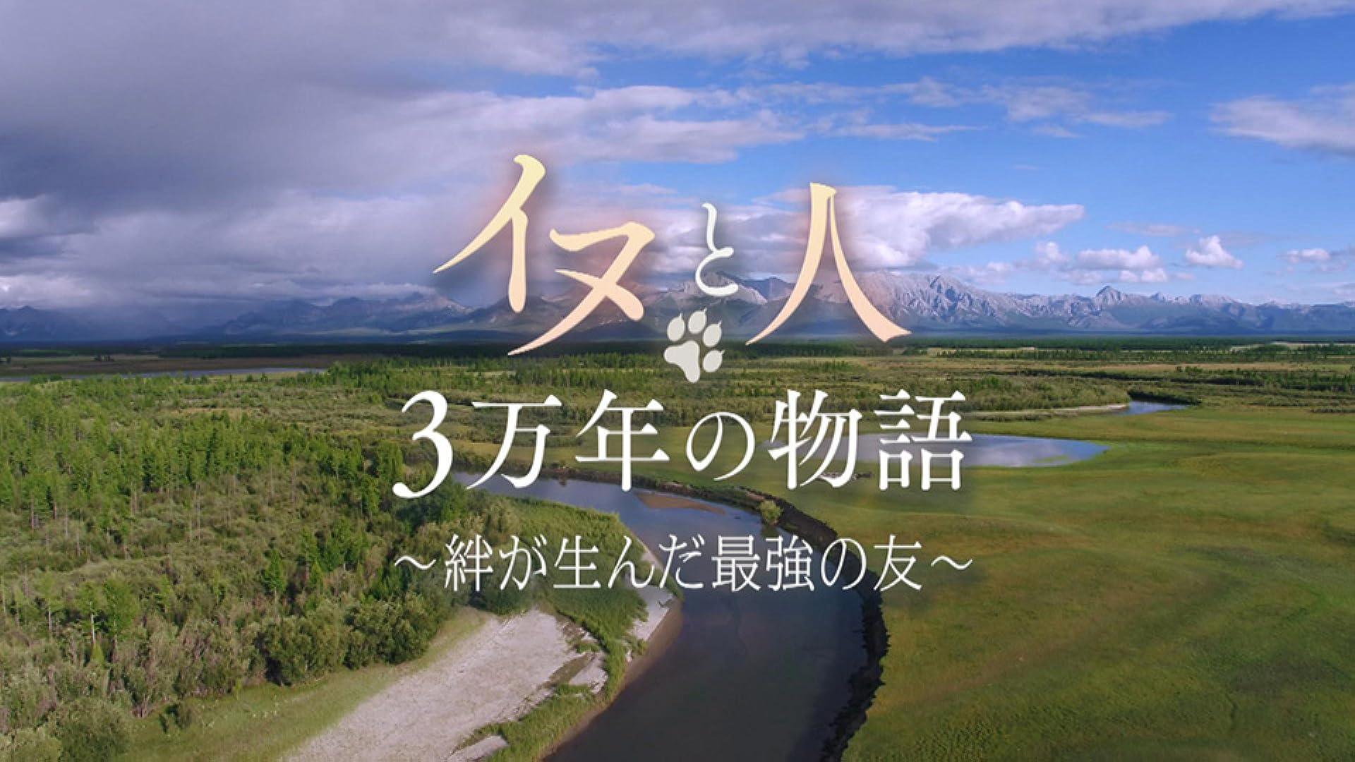 イヌと人の奇跡の物語(NHKオンデマンド)