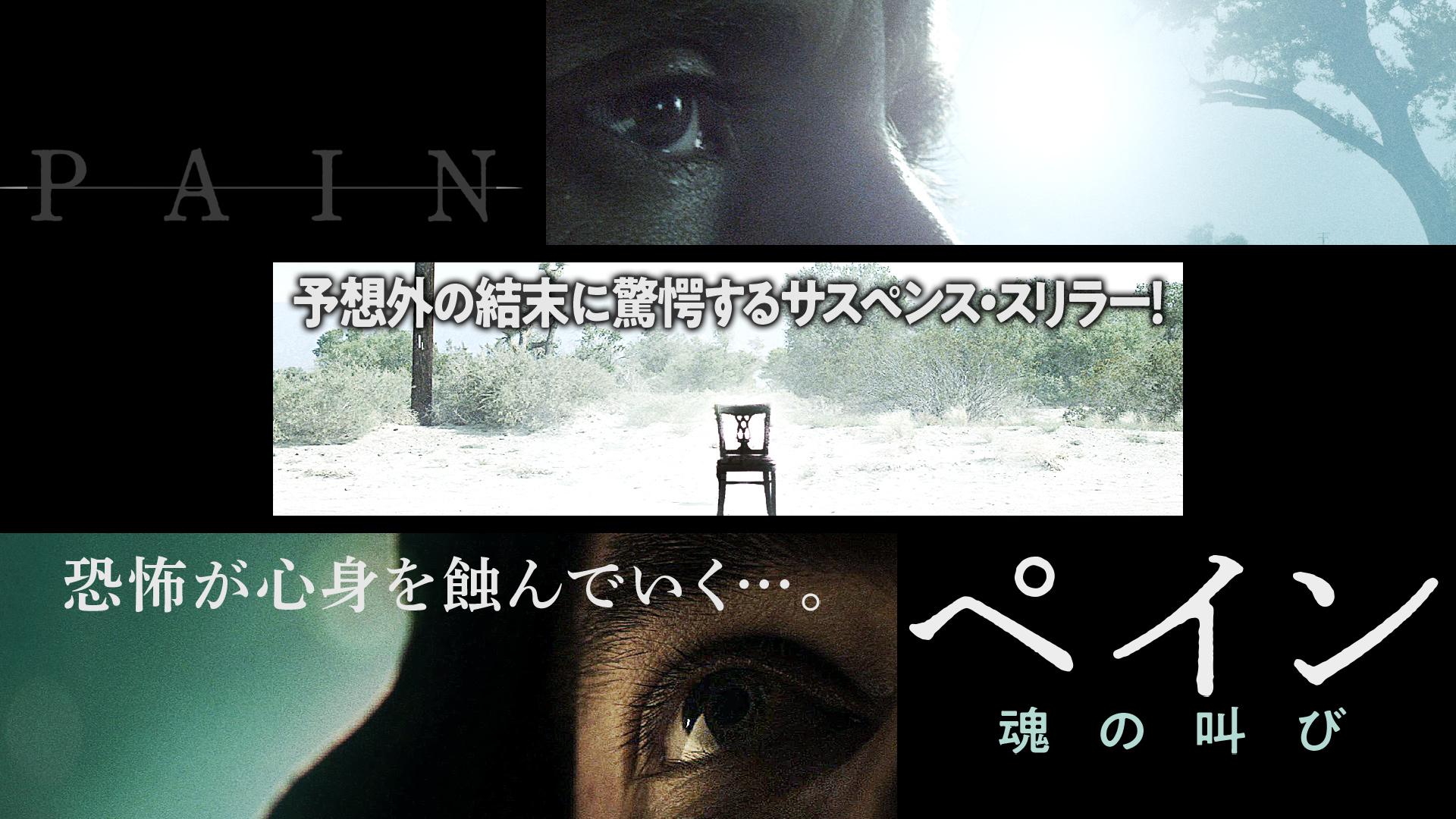 ペイン 魂の叫び(字幕版)
