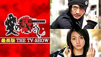 愛のむきだし 最長版 THE TV-SHOW