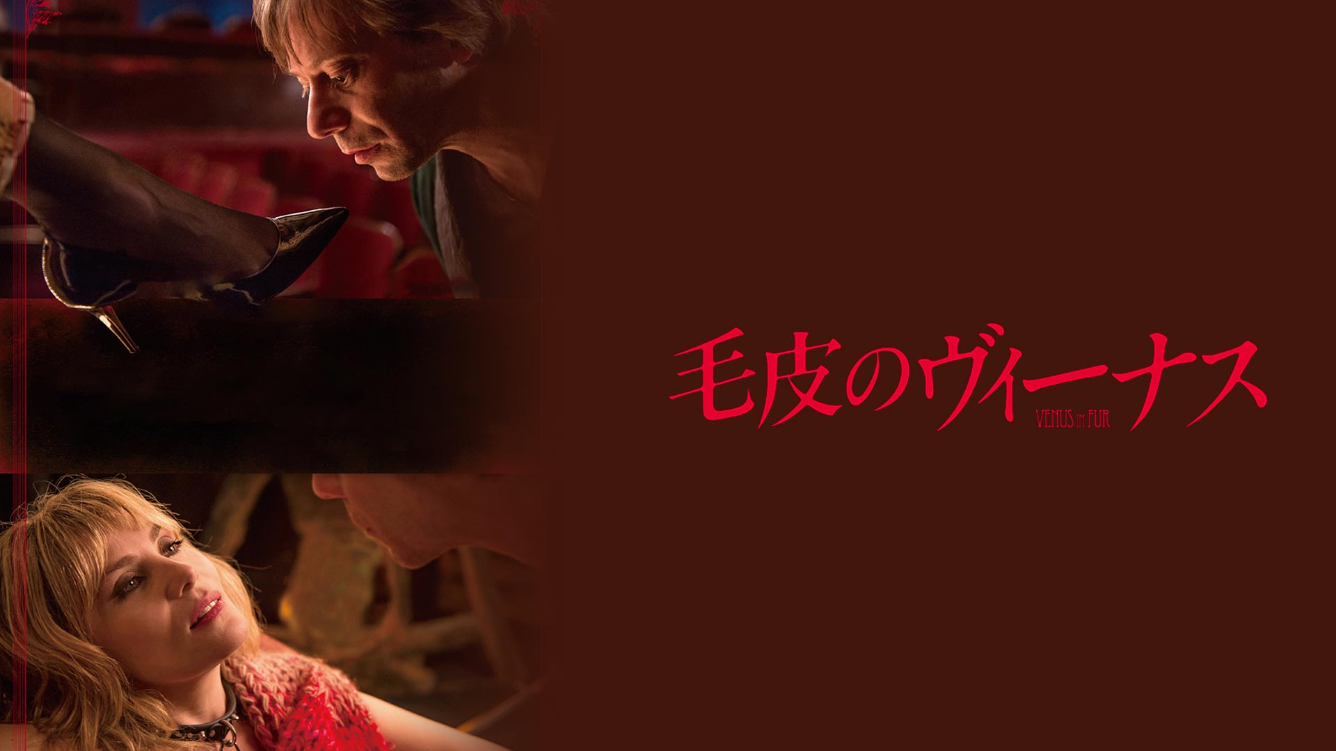 毛皮のヴィーナス(字幕版)