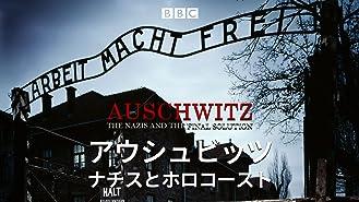 アウシュビッツ ナチスとホロコースト(字幕版)