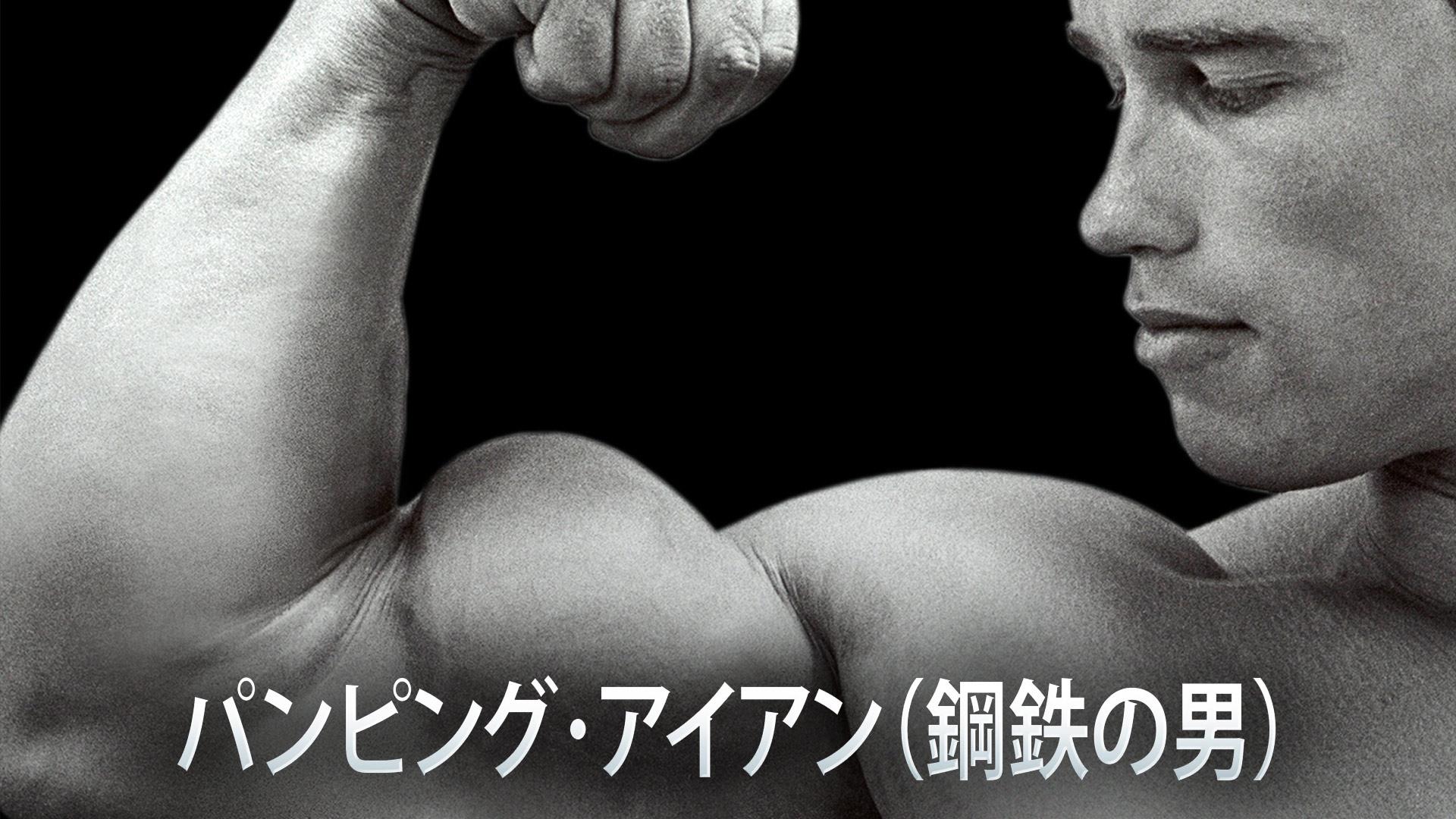パンピング・アイアン(鋼鉄の男)