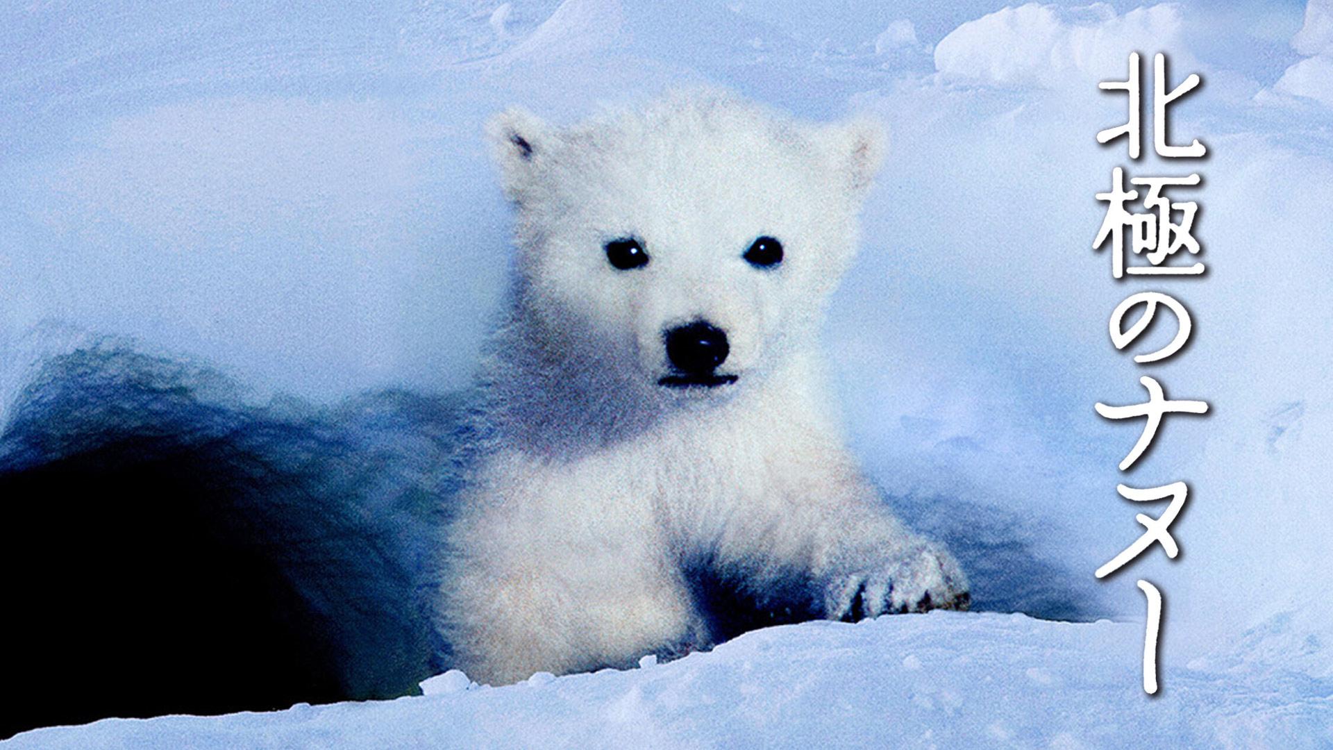 北極のナヌー(字幕版)