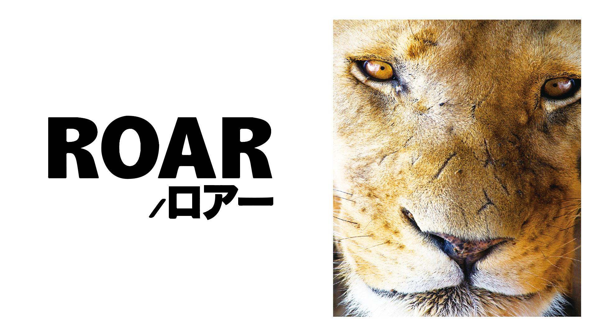 ROAR/ロアー