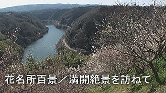 花名所百景 満開絶景を訪ねて