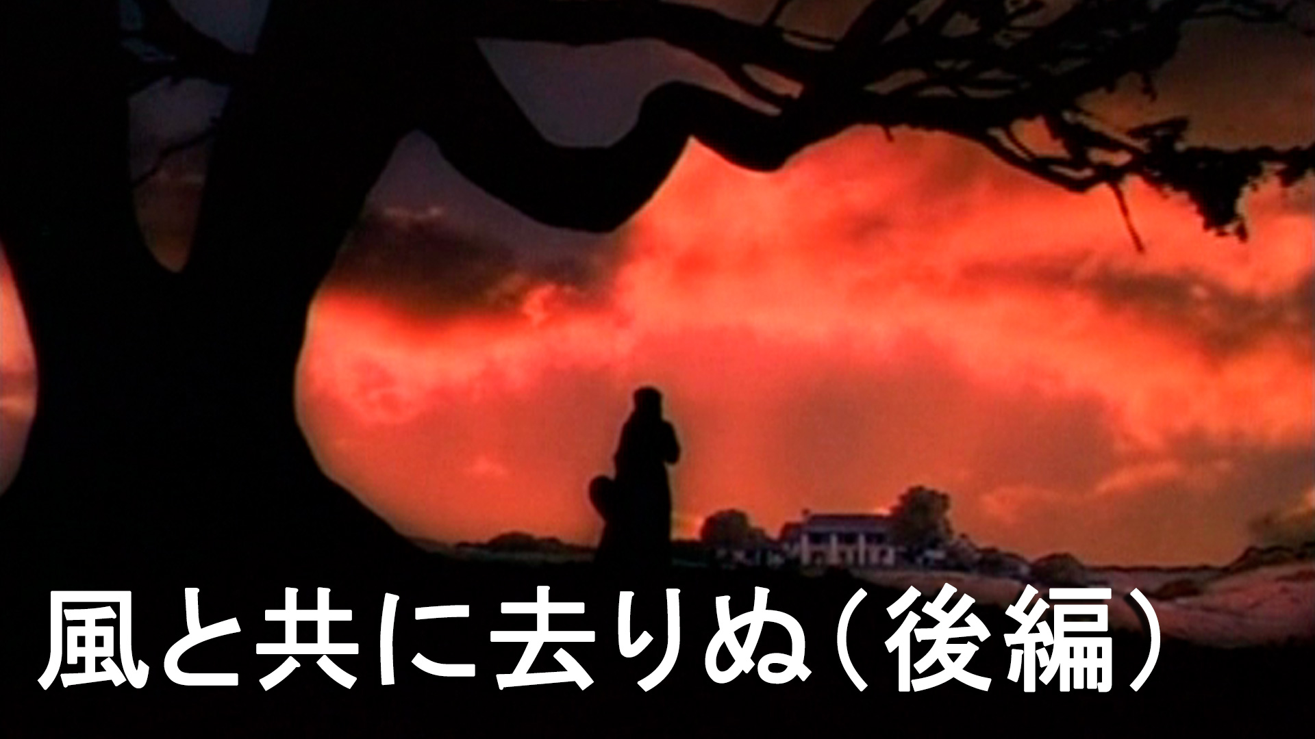 風と共に去りぬ (後編)(字幕版)