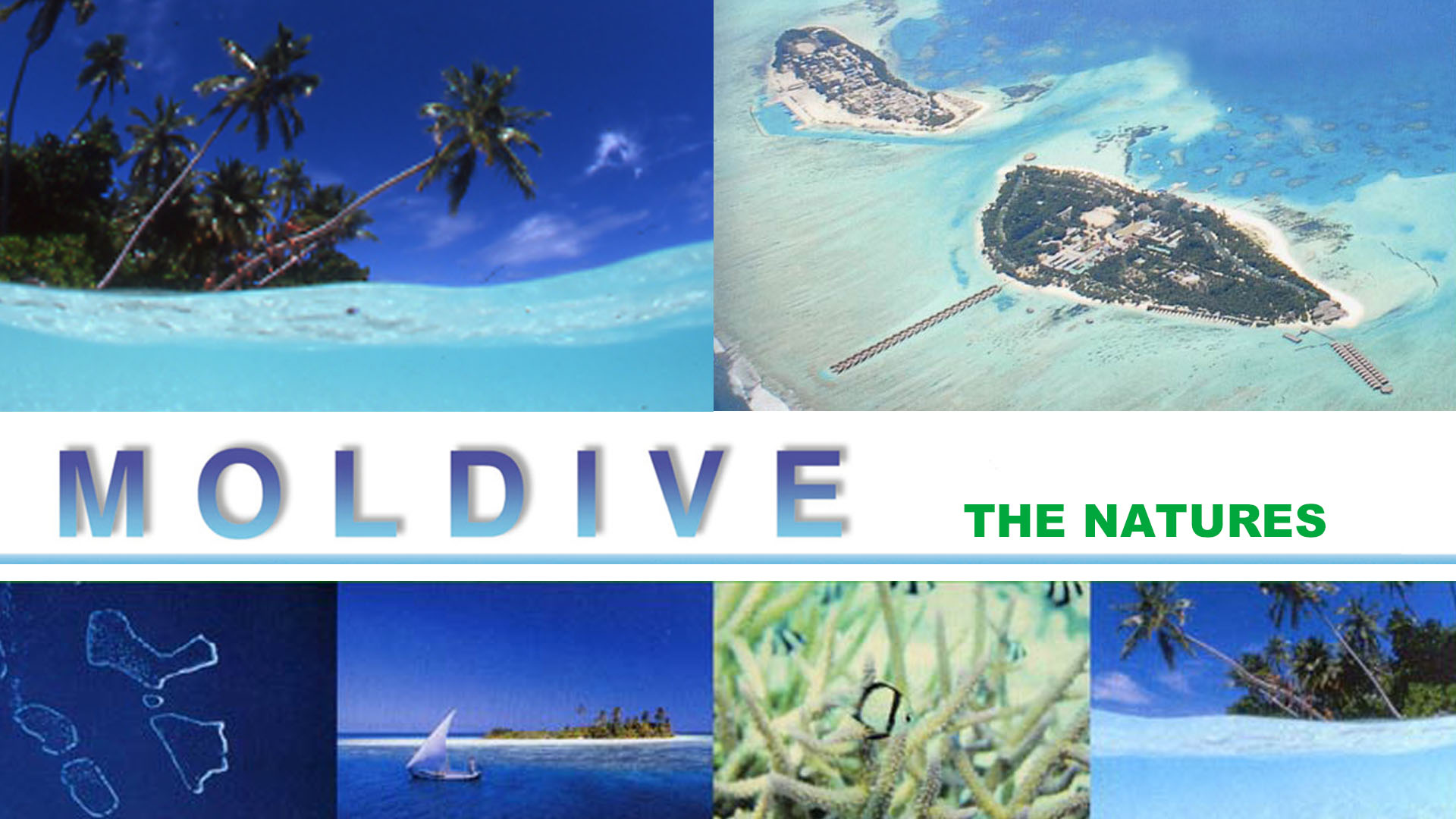 Moldive The Natures
