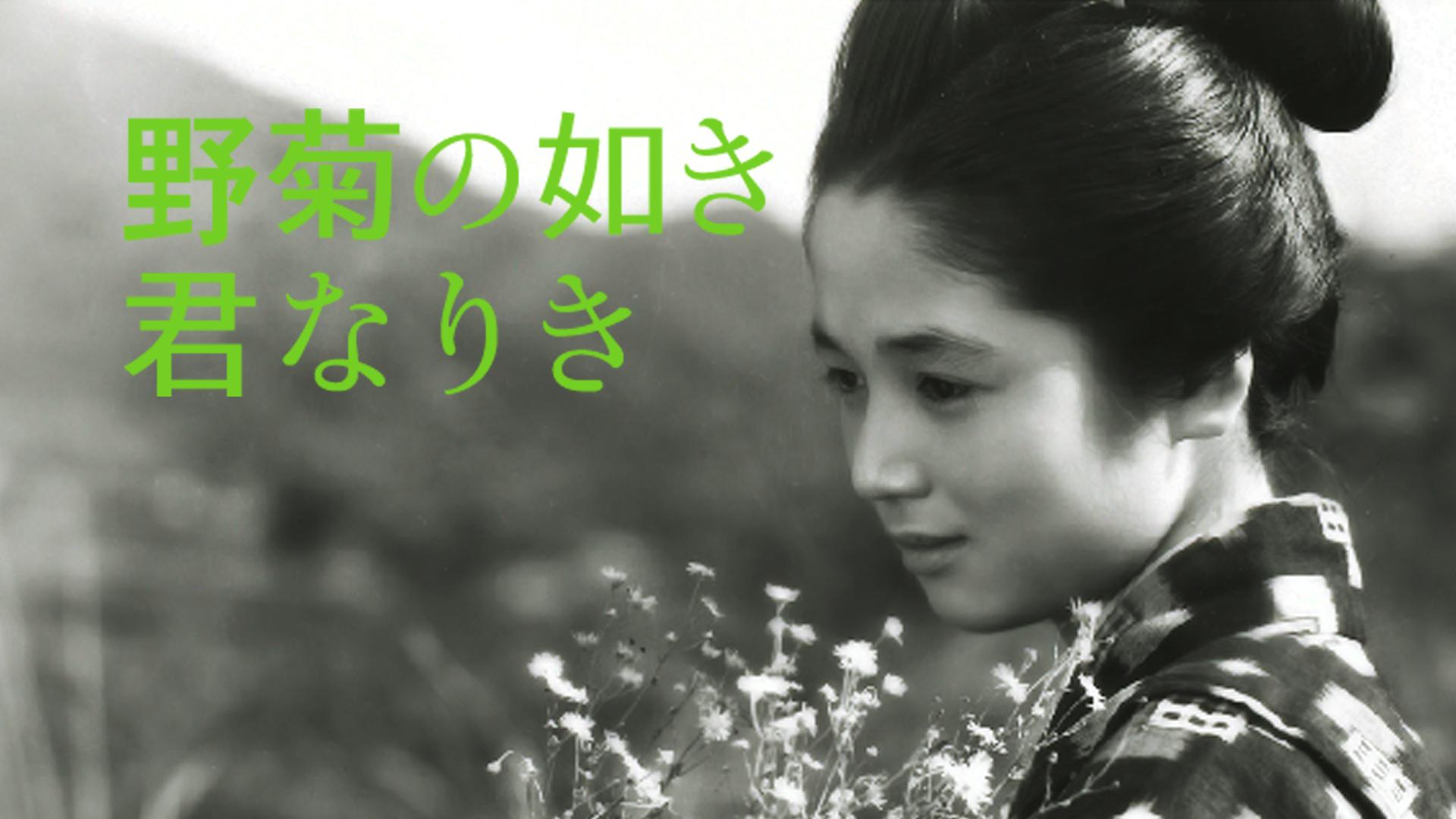 野菊の如き君なりき