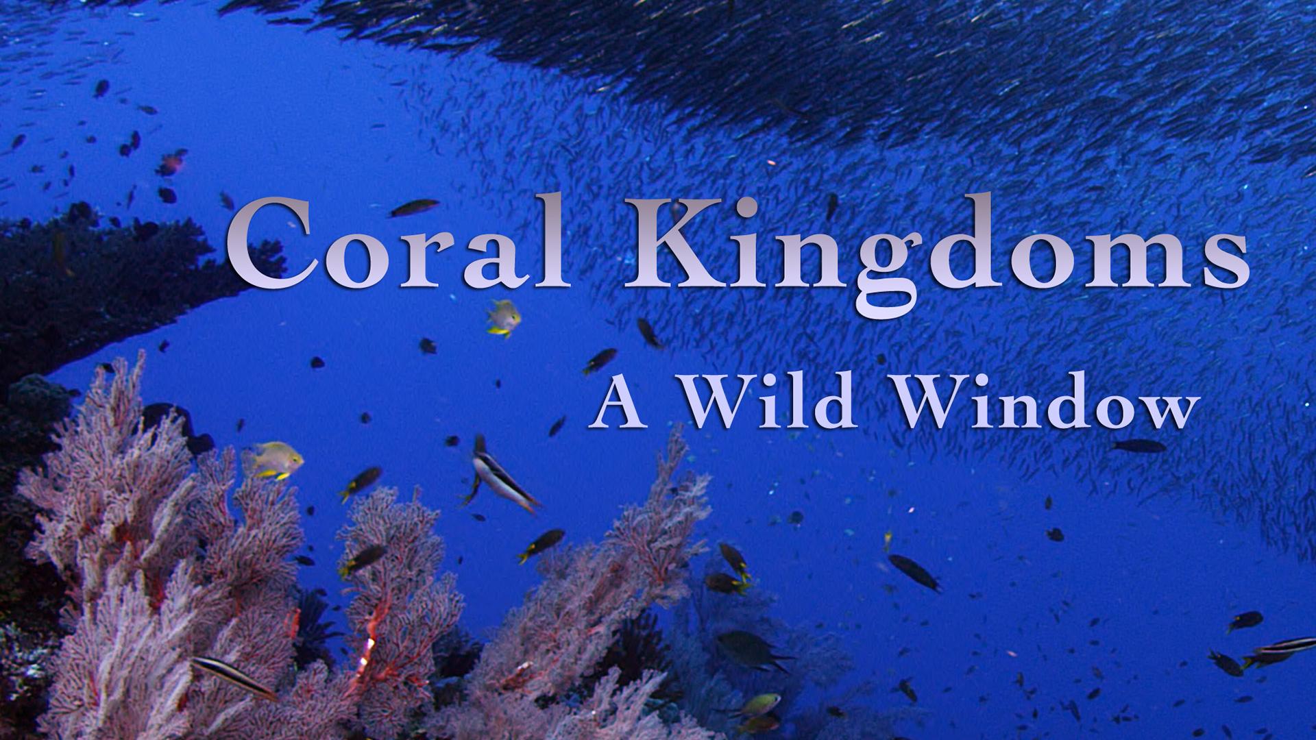 Coral Kingdoms
