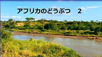 ビデオクリップ: アフリカのどうぶつ2